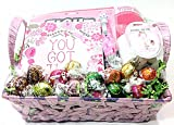 Womens Breast Cancer Awareness Holiday Gift Basket - Lindt Truffles Gourmet Chocolate Candy, Book, Travel Mug, Lapel Pin, Pen, Magnet & Towel (S)