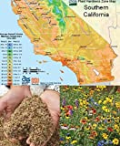 Search : Southern California Wildflower Seed Mix, 1 Ounce