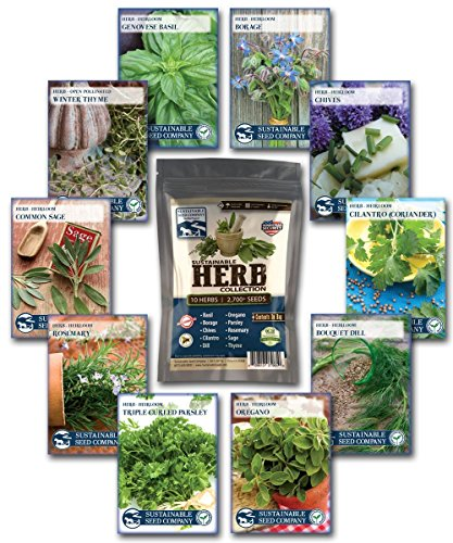 Culinary Herb Seed Collection - 100% NON-GMO, Easy-to Grow Heirloom Seeds - from a REAL Seed Company! (Mint Starter Kit compare prices)