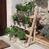 Plant Theatre - Three Tier Herb & Plant Theatre in Natural Hardwood. Ideal Gardeners Gift