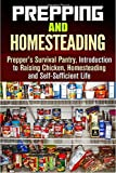 img - for Prepping and Homesteading: Prepper's Survival Pantry, Introduction to Raising Chicken, Homesteading and Self-Sufficient Life ((Prepper's Survival & Homesteading) book / textbook / text book