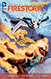 img - for The Fury of Firestorm: The Nuclear Men Vol. 2: The Firestorm Protocols (The New 52) book / textbook / text book