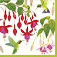 Entertaining with Caspari Hummingbirds Paper Dinner Napkins, Pack of 20