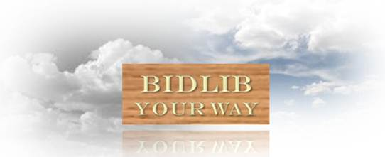 www.bidlib.com