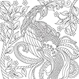 Best-Adult-Coloring-Book-Double-Size-140-Pages-with-68-Designs-Amazing-Designs-Stress-Relieving-Patterns-including-Mandalas-Geometric-Shapes-an-Animal-Perfect-for-Coloring-Sketching