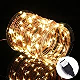 Innotree USB LED Fairy Starry String Lights Warm White - Waterproof Decorative Rope Lights for Indoor Outdoor Bedroom Patio Garden Party Wedding Commercial Lighting [33Ft Copper Wire - 100 LED Bulbs]