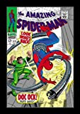 Stan Lee Marvel Masterworks The Amazing Spider-Man Volume 6 (Covert Artwork May Vary)