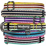 """Blueberry Pet Spring Collars for Dogs 5/8"""" S 3M Reflective Multi-colored Stripe Olive and Blue-gray Dog Collar"""