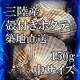 活ホタテ 殻付きホタテ 中サイズ 海鮮 バーベキュー 約150g 10枚(約1.5kg)築地直送 宮城 三陸産 他 BBQ