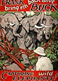 img - for Capturing Wild Elephants: