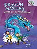 Dragon Masters #3: Secret of the Water Dragon (A Branches Book) - Library Edition