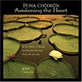 Pema Chodron: Awakening the Heart 2006 Calendar (1569376468) by Pema Chodron