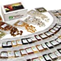 135 Variety Heirloom Survival Seed Bank - Emergency Seed Vault