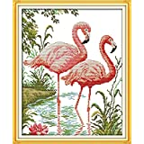 Joy Sunday Stamped Cross Stitch Kits Cross-Stitch Pattern Two Flamingos with DMC Threads White Fabric DIY Hand Needlework kit 16.5''x20'' (Color: 11CT Stamped,Two flamingos)