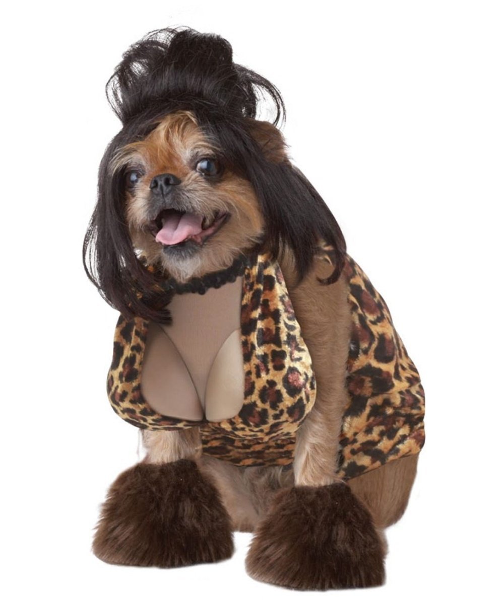Funny Small Dog Halloween Costumes Dog Costume Small Tan