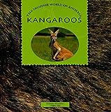 KANGAROOS (Dominie World of Animals)