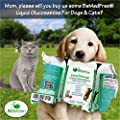 BeMedFree.com Extra Strength Liquid Glucosamine For Dogs & Cats, Soothing Joint Relief