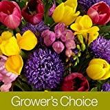 Grower's Choice (with FREE glass vase) - Flowers - Great for Valentine's Day