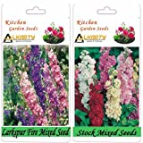 Alkarty Larkspur Fire Mixed And Stock Mixed Seeds Pack Of 20 (Winter)