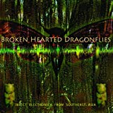 Brokenhearted Dragonflies: Insect Electronica from Southeast Asia [VINYL] Tucker Martine