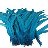 Sowder Turquoise Rooster Coque Tail Feathers 13-16inch Lengh Pack of 50 (Color: Turquoise)