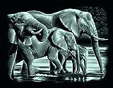 Mammut A30PPSFA - Scraperfoil