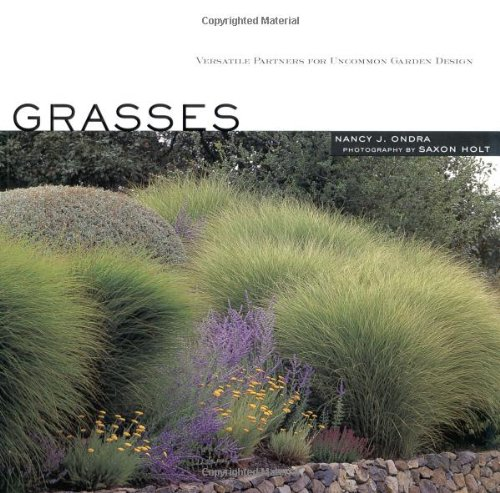 Landscaping landscaping ideas for front stock yards bank for Front yard ornamental grasses