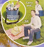Coolbag stool - multipurpose cool bag / seat