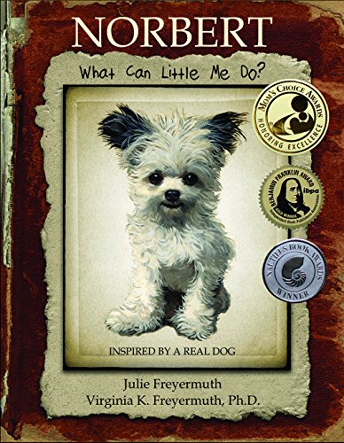 Norbert: What Can Little Me Do?