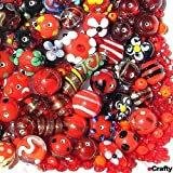 eCrafty EC-2054 Jewelry Maker's Lampwork Glass and Crystal Beads Mix, Red Floral