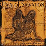 Remedy Lanepar Pain of Salvation