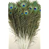 50 Pcs Peacock Feathers 35