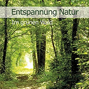 Im grünen Wald (Entspannung Natur 2) Hörbuch