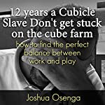 12 Years a Cubicle Slave: How to Find the Perfect Balance Between Work and Play | Joshua Osenga