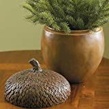 Decorative Acorn Container