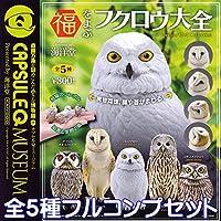 福をよぶフクロウ大全 カプセルQミュージアム Owl 動物 鳥 フィギュア 模型 ガチャ 海洋堂 (全5種フルコンプセット)