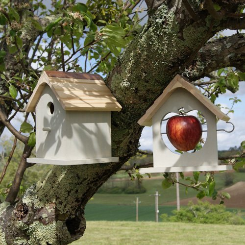 Bird Nesting Box & Apple Feeder Set, Gift Boxed - Ideal Gift