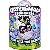 Hatchimals Surprise – Puppadee – Hatching Egg with Surprise Twin Interactive Hatchimal Creatures and Nest Accessory by Spin Master, Available Exclusively at Toy 'R' Us (Color: Multicolor)