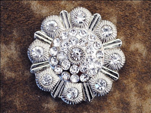 Set Of 2 Clear Rhinestone Berry Conchos Saddle Headstall Tack Bling Cowgirl