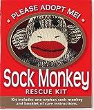 Sock Monkey Rescue Kit (Activity Kit) (Petites Plus Kit)