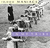 In My Tribe an album by 10000 Maniacs
