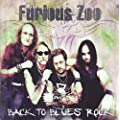 Back To Blues Rock