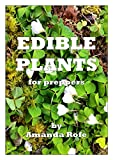 Edible Plants for Preppers