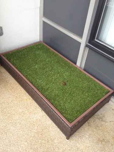 Porch Potty Standard: #1 Selling Grass Litter Box for Dogs