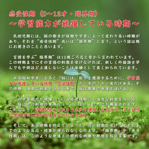 英語教材DVD 旅行・飛行機(英語) [DVD]