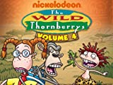 The Wild Thornberrys: Matadi or Bust