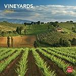 Vineyards 2013 - Weinberge - Original...