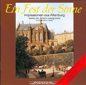 Organs in Altenburger Land
