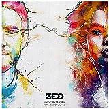 Zedd feat Selena Gomez - I Want You To Know