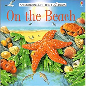 On the Beach (Usborne Lift the Flap Books)